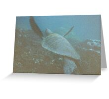 Underwater Sea Turtle in the Galapagos Greeting Card