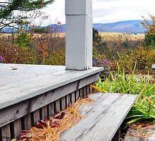 Frost Porch by Lyana Votey