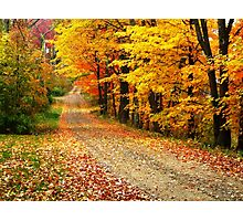 The Country Road Photographic Print