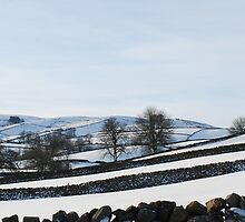 West Wensleydale in Snow by rwmilnes
