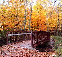 Beckoning Bridge by Deb  Badt-Covell
