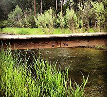 Bridge Across a Creek  by JULIENICOLEWEBB