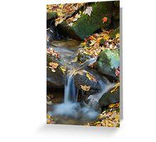 Teskewata Falls Greeting Card