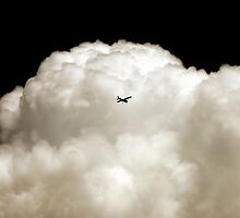Flying Into the Storm by Debbie Pinard