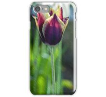 Spring Tulip in the Rain iPhone Case/Skin