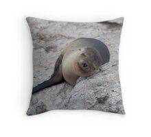 Sea Lion, North Seymour Island, Galapagos Throw Pillow