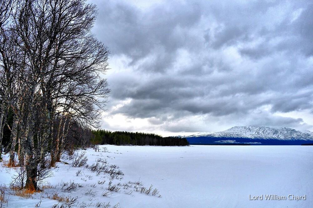 Swedish Lakes - Great frozen lake near mount Åreskutan in Sweden by Lord William Chard