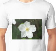He Paints In White Unisex T-Shirt