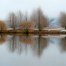 Winter Waters by Liz Davidson
