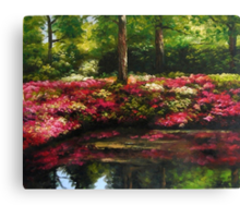The Spring In Washington Canvas Print
