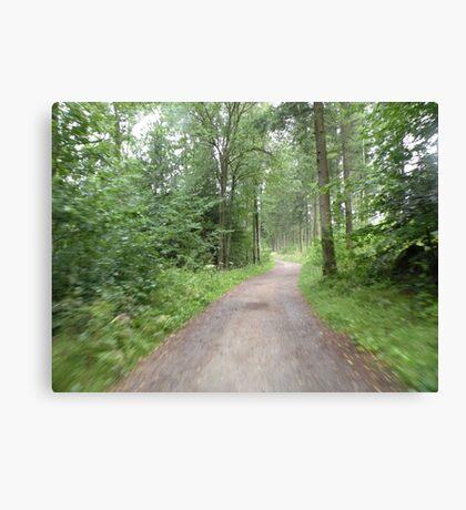 Into the Swedish Woods Canvas Print