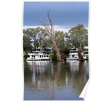 Houseboats on the River Murray Poster