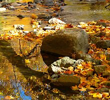 That meandering river of leaves and gold by MarianBendeth