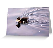 a baby ducky Greeting Card