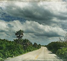 Island Drive by Laurie Search