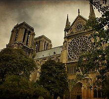 Notre Dame Cathedral, Paris, France by Teresa Zieba