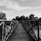 Wood Bridge in Danube Delta  by photographyes