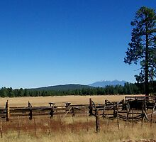 Fences, Tree, and Mountains by OakRanger