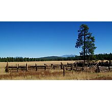 Fences, Tree, and Mountains Photographic Print