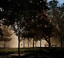 Middle Path Morning by MClementReilly