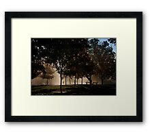 Middle Path Morning Framed Print