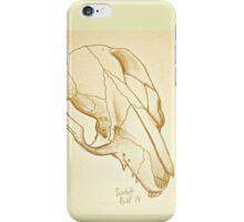 Brushtail Possum Skull iPhone Case/Skin