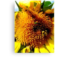 Last Days in the Life of a Bee- 35mm film Canvas Print