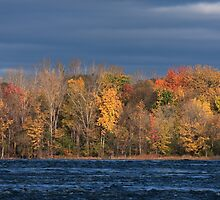 Ottawa River Fall Colours 02 by Stephen Stephen