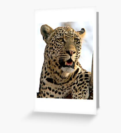 Induna Greeting Card
