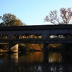 Covered Bridge - Wayneville Ohio Fall by Tony Wilder