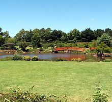 Japanese gardens Toowoomba  Queensland. Aust. by Martin  Brinsley