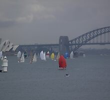 Sydney Harbour by shah1401