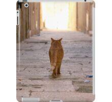 Malta 4 iPad Case/Skin
