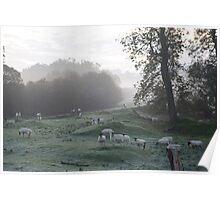 Misty Autumnal Morning Denton Poster