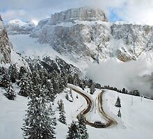Wintry curve by Arie Koene