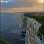 Bempton Cliffs, Yorkshire by almaalice