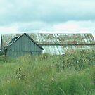 Barn In The Softness Of Nature by Deborah  Benoit