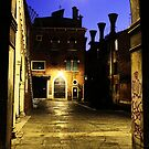 Venice by night by Luisa Fumi