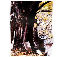 Restful Tree Poster