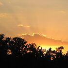 Autumn Sunset by DottieDees
