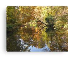 Splendor in the Park Canvas Print