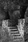 No Trespassing - Puglia, Italy by Debbie Pinard
