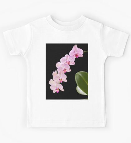 Orchid - 43 Kids Tee