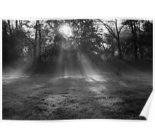 Sunlight though the morning mist Poster
