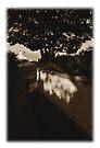 Olde Kearney Postcards # 01 by ragman