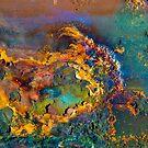 Wild Thing by DebraLee Wiseberg