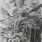 Rothley Park oak Ambleside. by Robert David Gellion