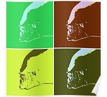 Warhol Xenomoporh Poster