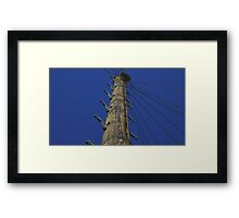 Phone Pole Perspective Framed Print