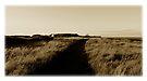 Olde Kearney Postcards # 11 by ragman